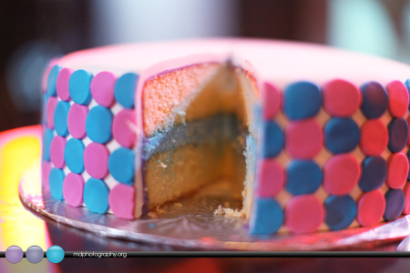 Gender-Reveal-Party-12-450x300